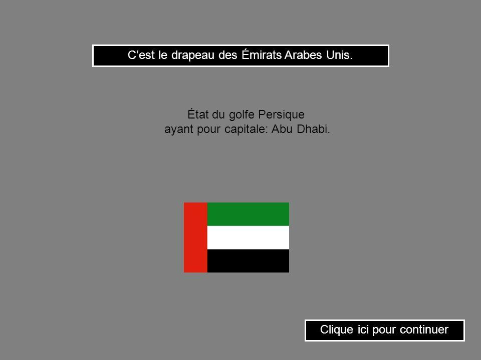 C'est le drapeau des Émirats Arabes Unis.
