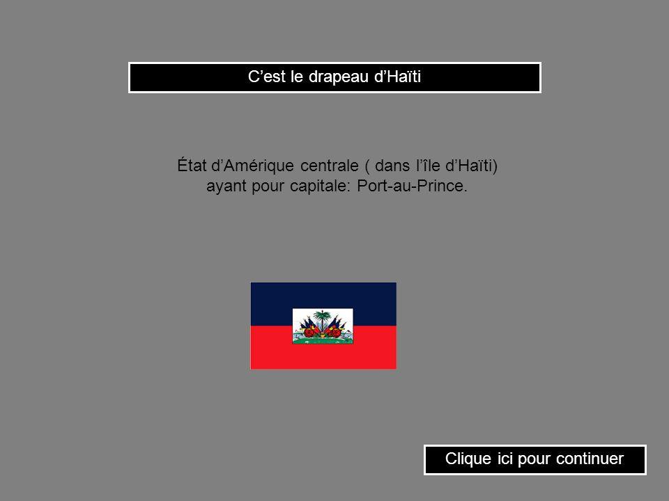 C'est le drapeau d'Haïti