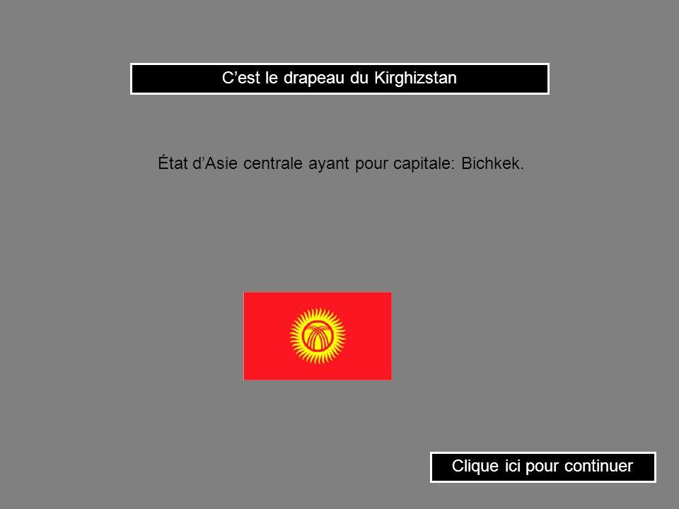 C'est le drapeau du Kirghizstan