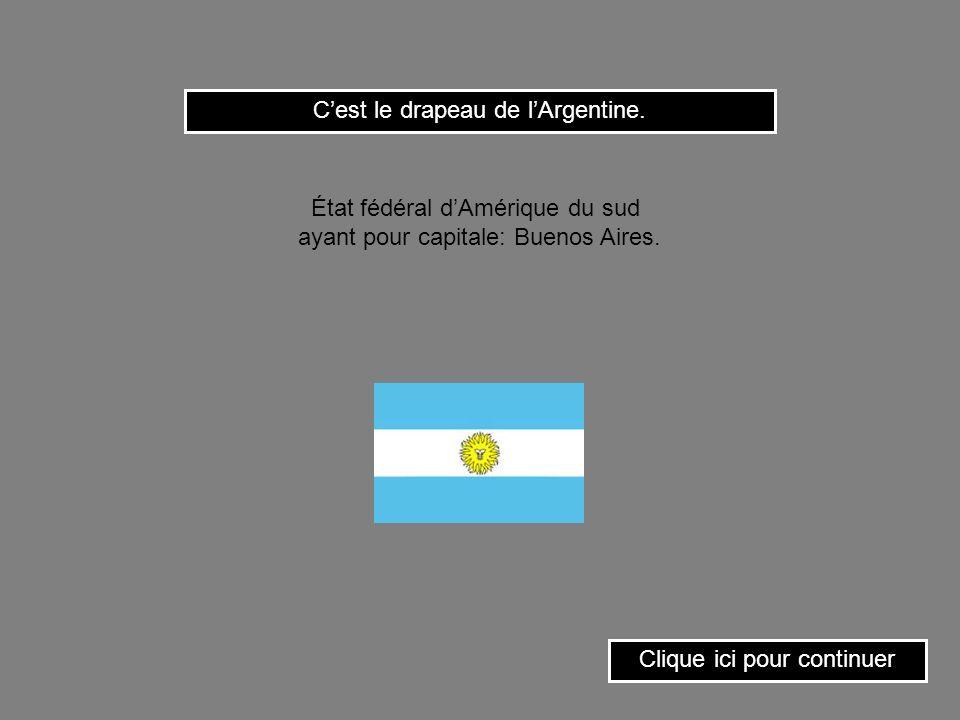 C'est le drapeau de l'Argentine.