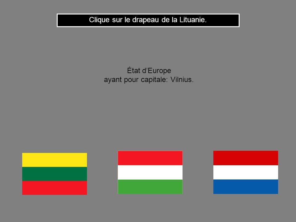 Clique sur le drapeau de la Lituanie.