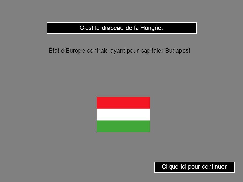 C'est le drapeau de la Hongrie.