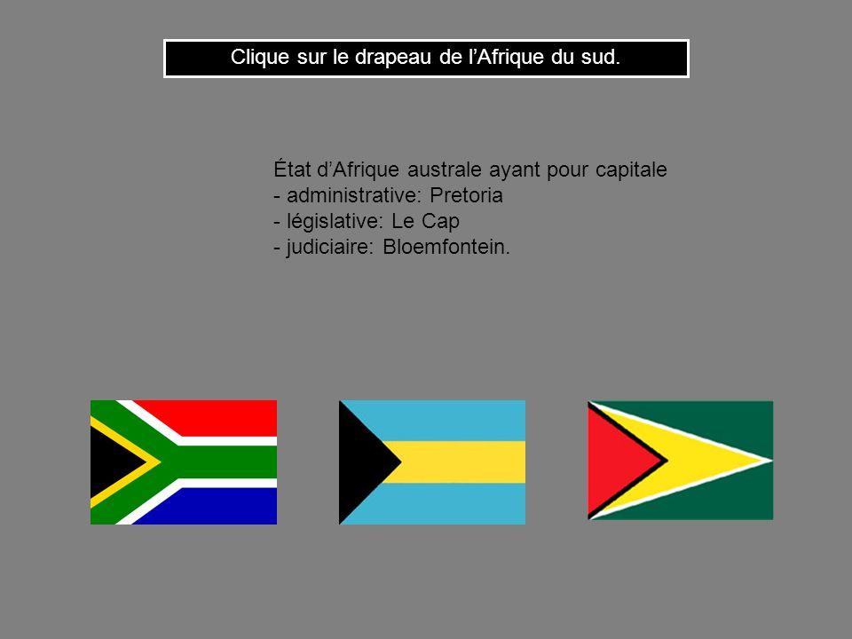 Clique sur le drapeau de l'Afrique du sud.