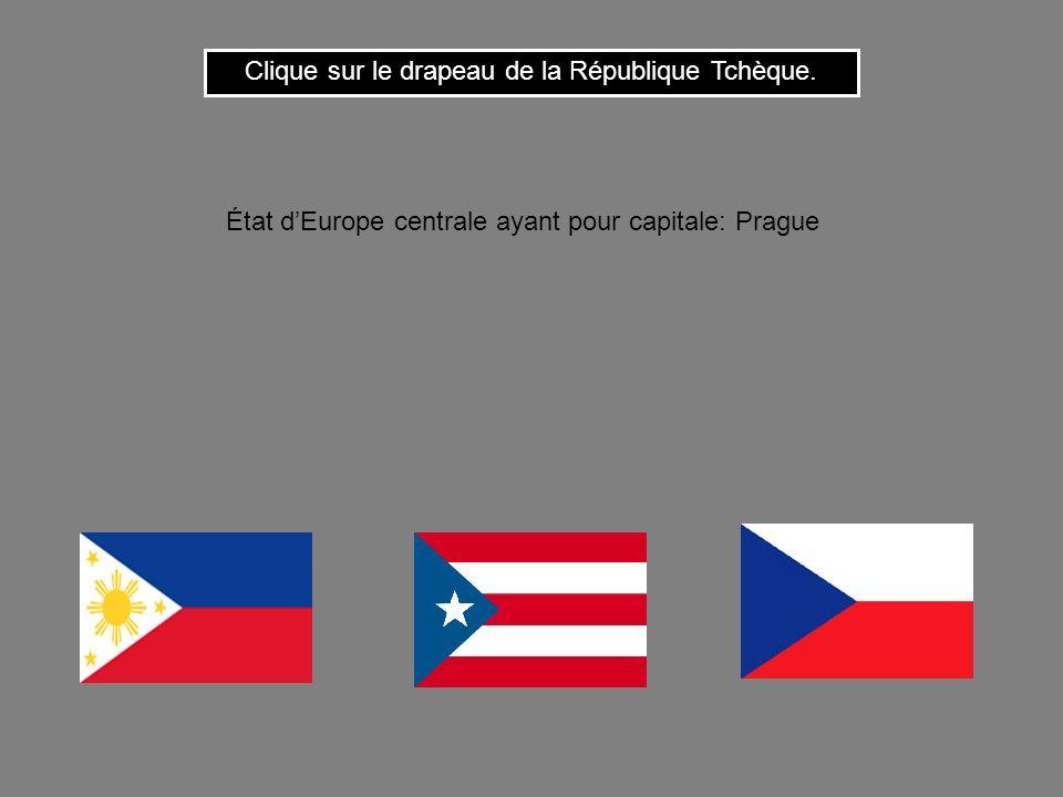 Clique sur le drapeau de la République Tchèque.