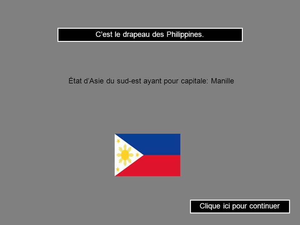 C'est le drapeau des Philippines.