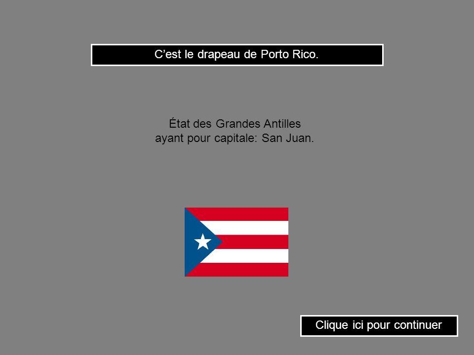 C'est le drapeau de Porto Rico.