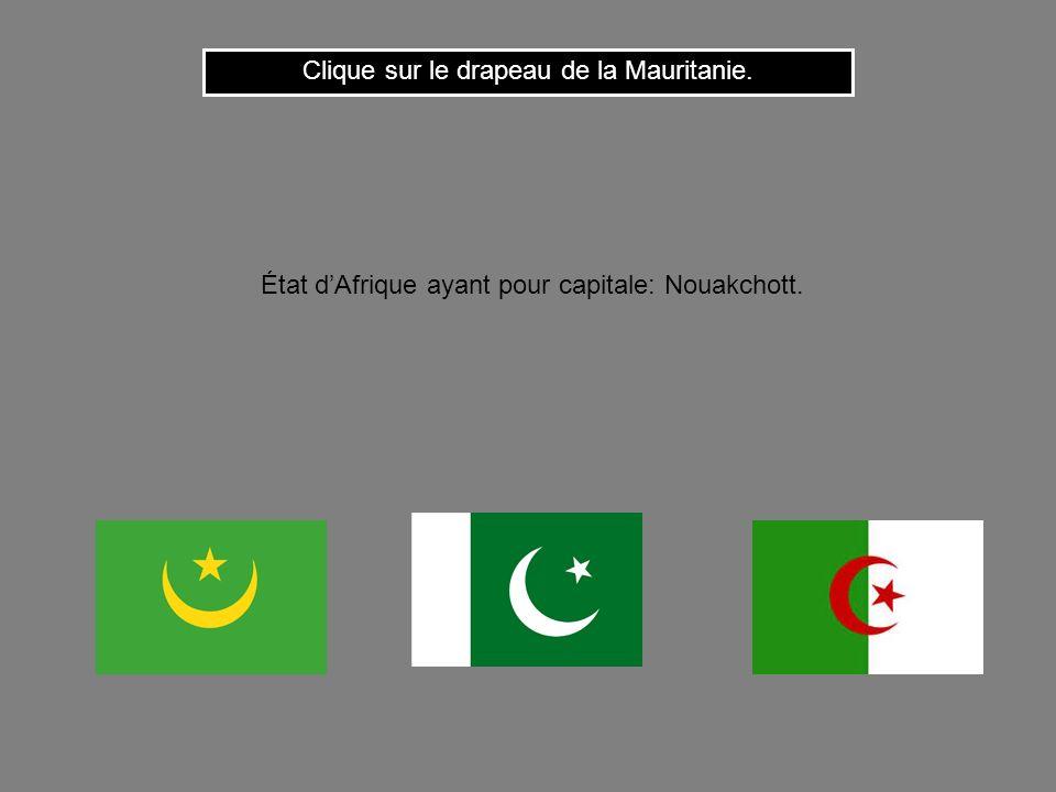 Clique sur le drapeau de la Mauritanie.