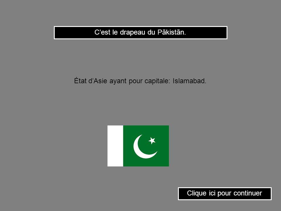 C'est le drapeau du Pākistān.