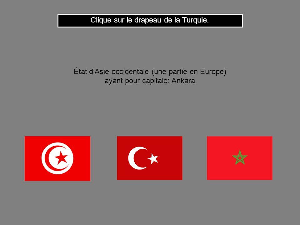 Clique sur le drapeau de la Turquie.