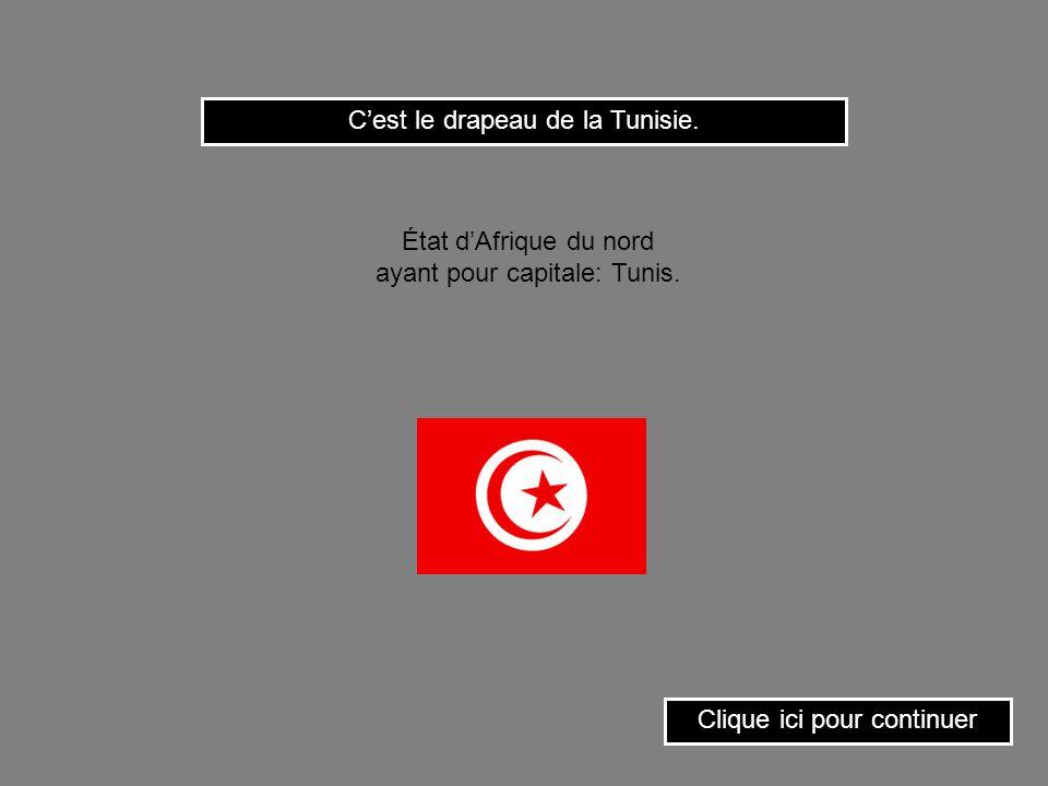 C'est le drapeau de la Tunisie.