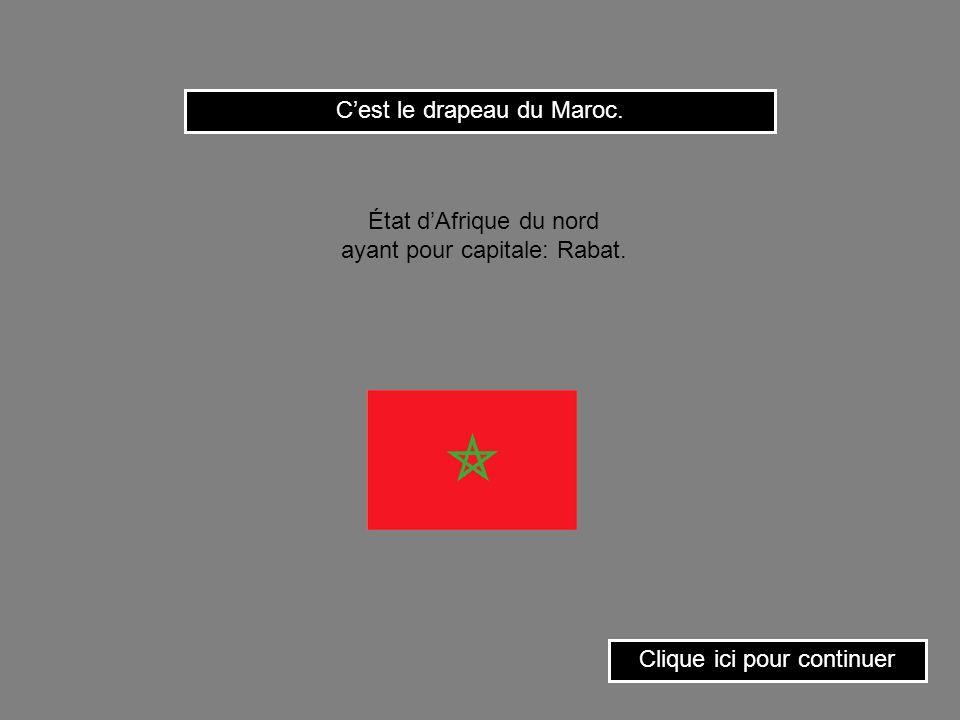 C'est le drapeau du Maroc.