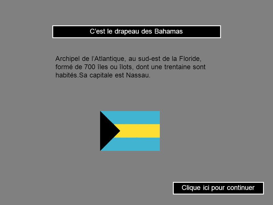 C'est le drapeau des Bahamas