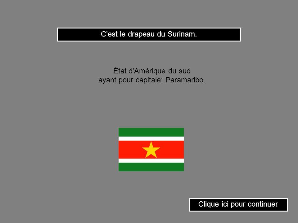 C'est le drapeau du Surinam.