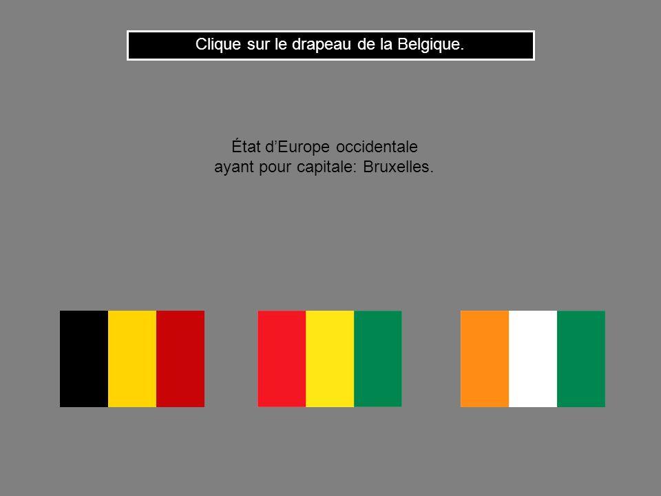 Clique sur le drapeau de la Belgique.