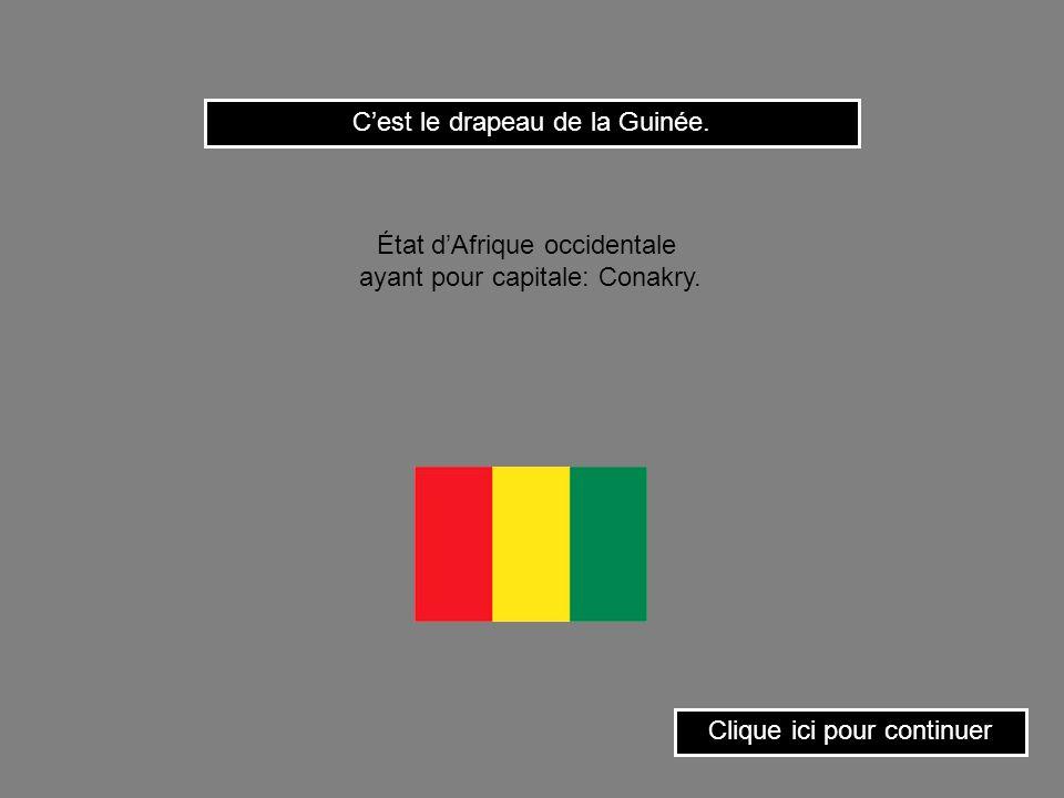 C'est le drapeau de la Guinée.