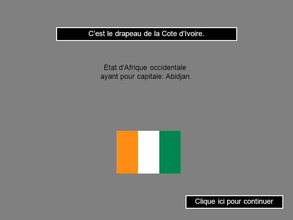C'est le drapeau de la Cote d'Ivoire.