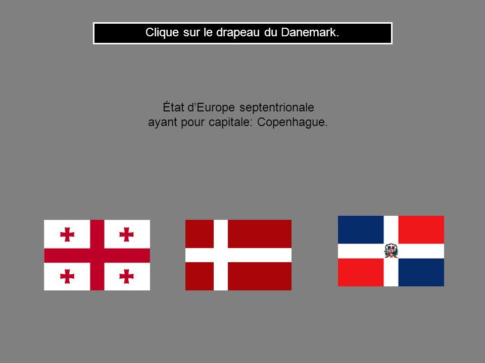 Clique sur le drapeau du Danemark.