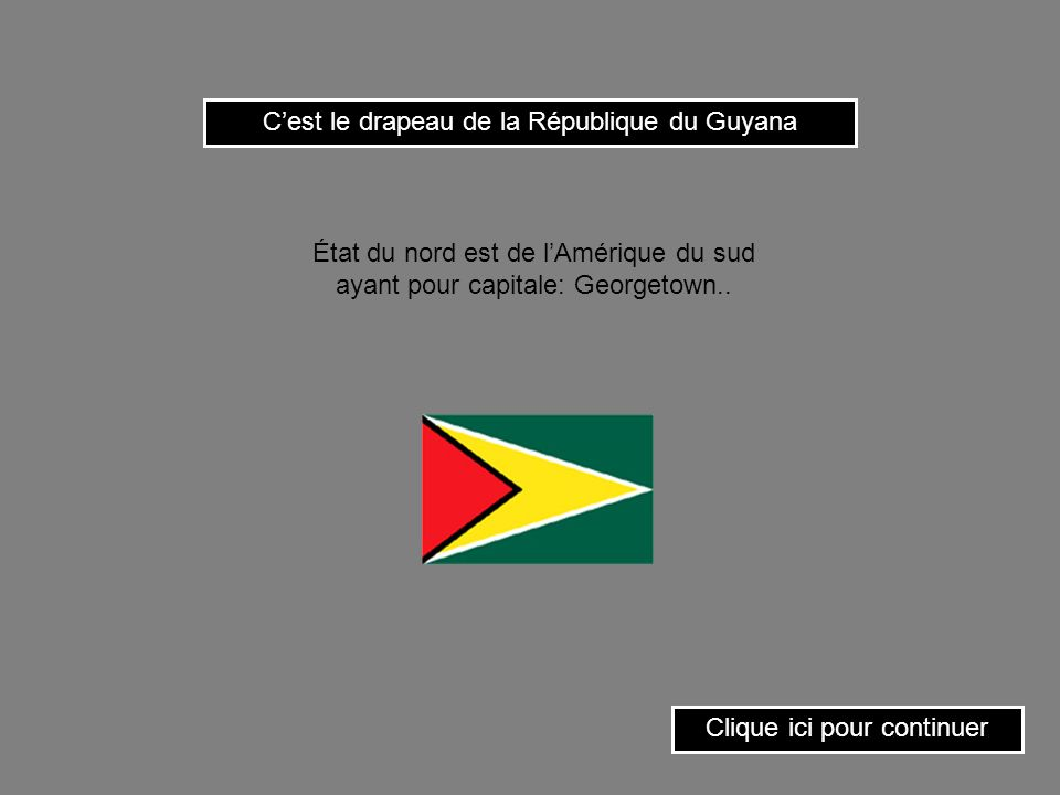 C'est le drapeau de la République du Guyana
