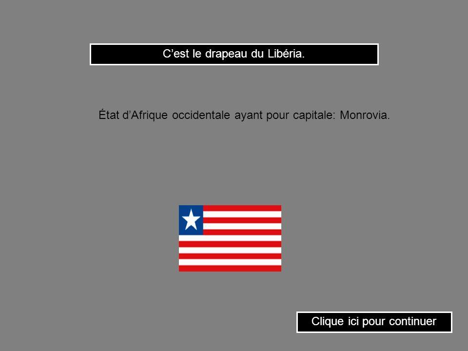 C'est le drapeau du Libéria.