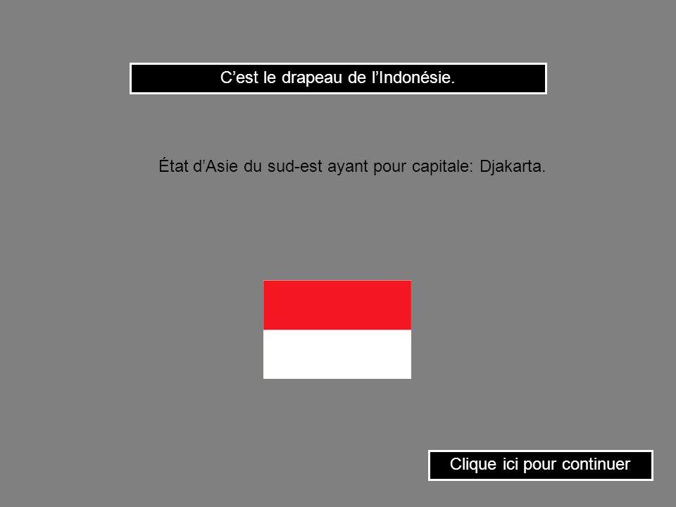 C'est le drapeau de l'Indonésie.