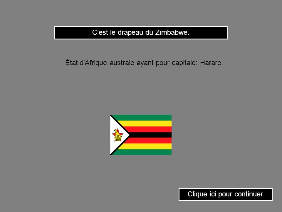 C'est le drapeau du Zimbabwe.
