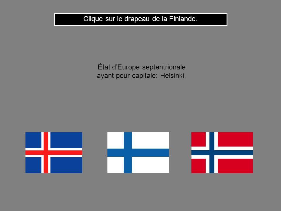 Clique sur le drapeau de la Finlande.