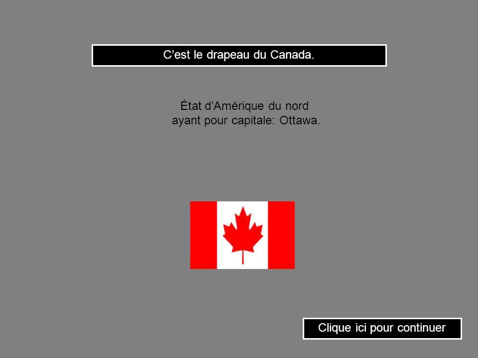 C'est le drapeau du Canada.