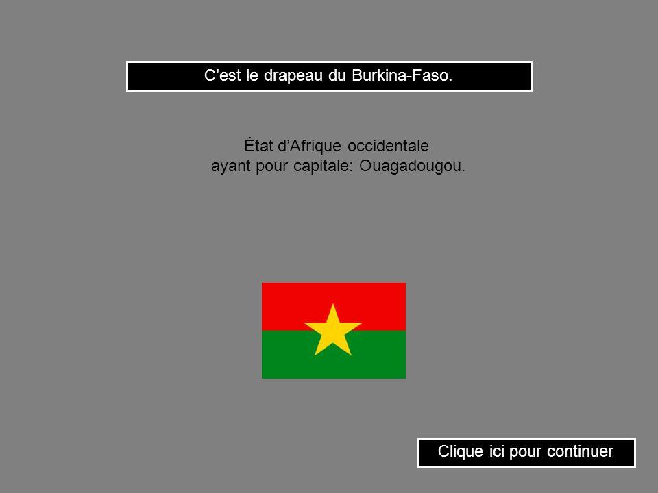 C'est le drapeau du Burkina-Faso.