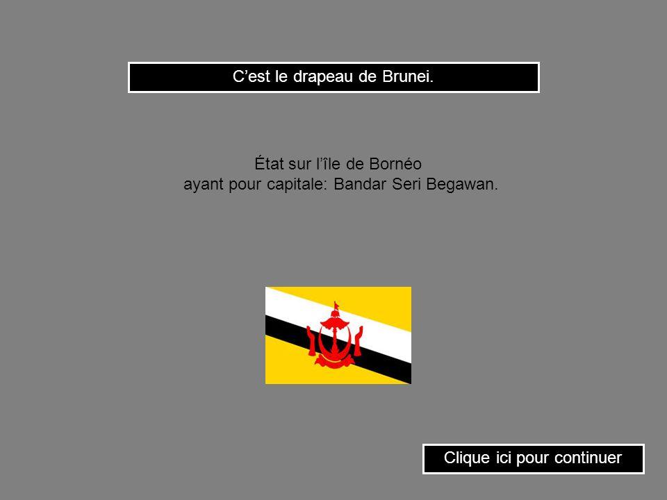 C'est le drapeau de Brunei.
