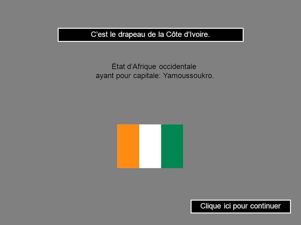 C'est le drapeau de la Côte d'Ivoire.