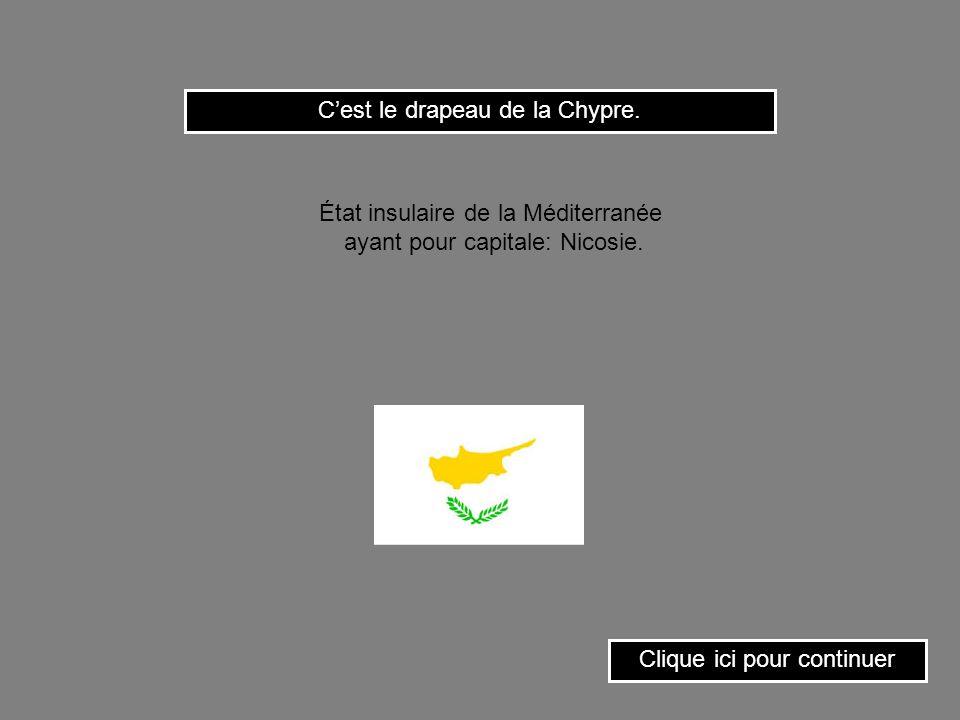 C'est le drapeau de la Chypre.