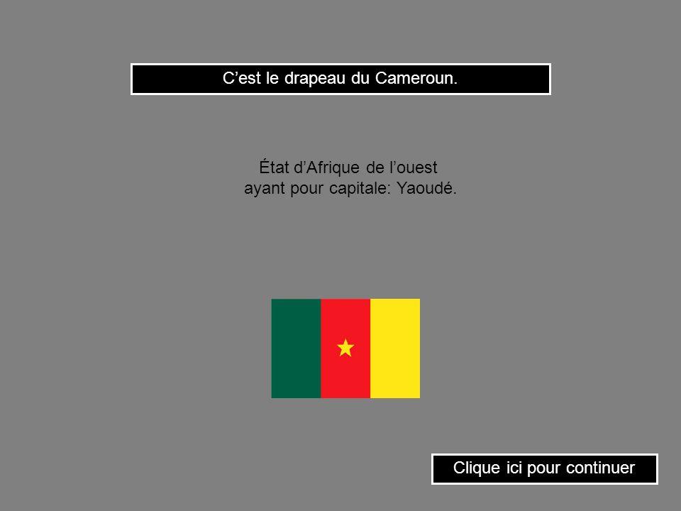 C'est le drapeau du Cameroun.
