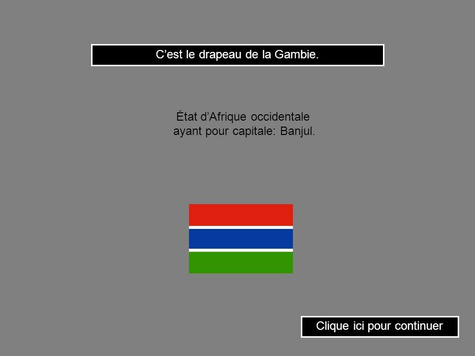 C'est le drapeau de la Gambie.