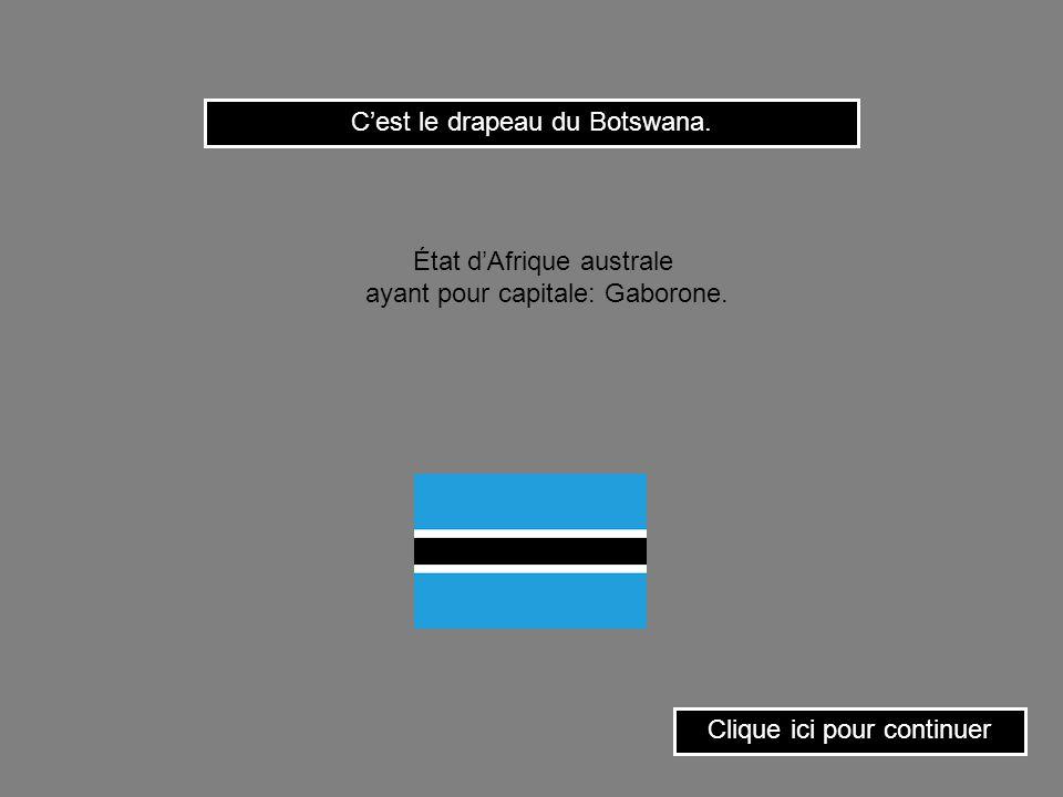 C'est le drapeau du Botswana.