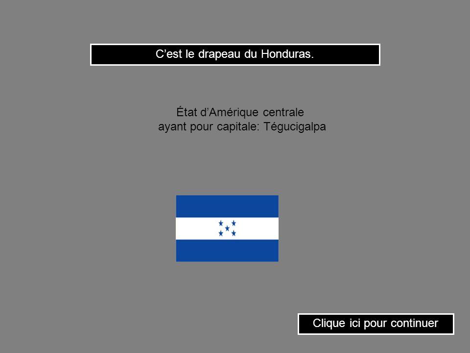 C'est le drapeau du Honduras.