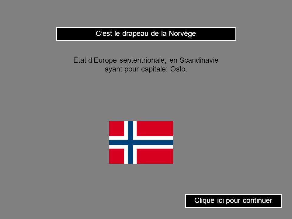 C'est le drapeau de la Norvège