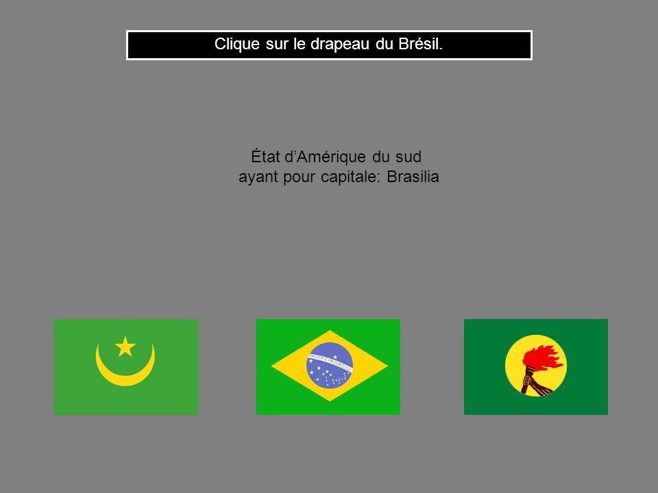 Clique sur le drapeau du Brésil.