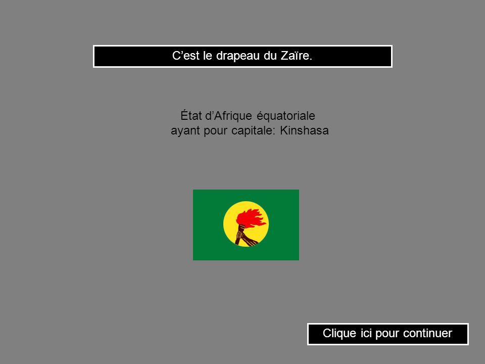 C'est le drapeau du Zaïre.