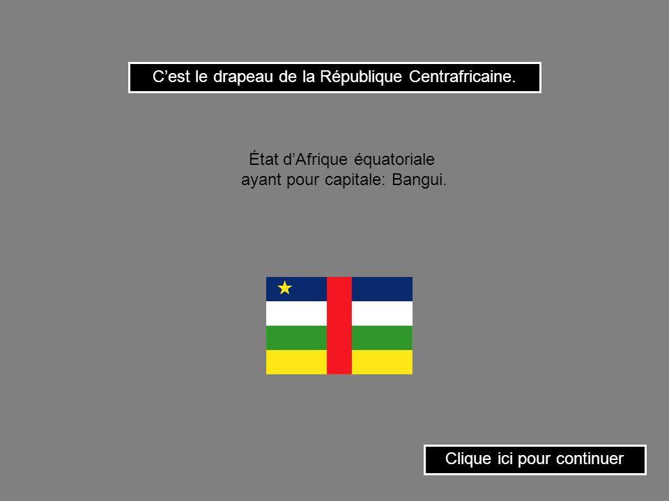 C'est le drapeau de la République Centrafricaine.