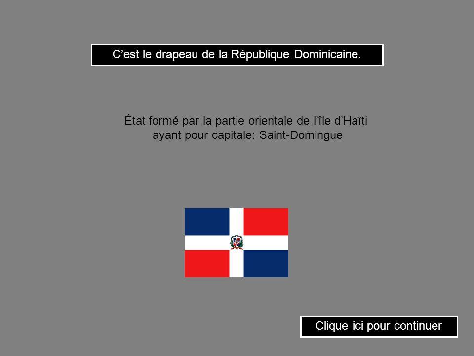 C'est le drapeau de la République Dominicaine.