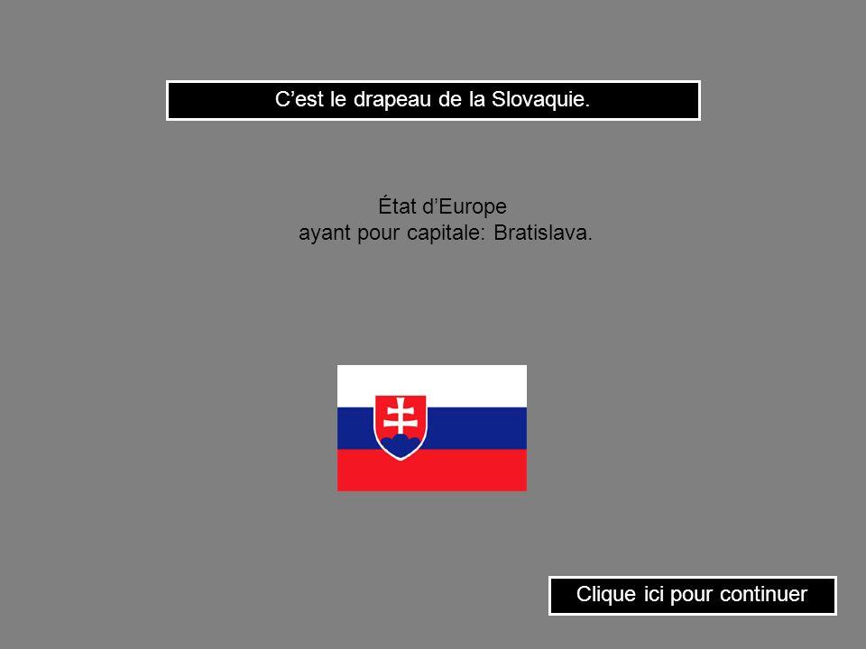 C'est le drapeau de la Slovaquie.