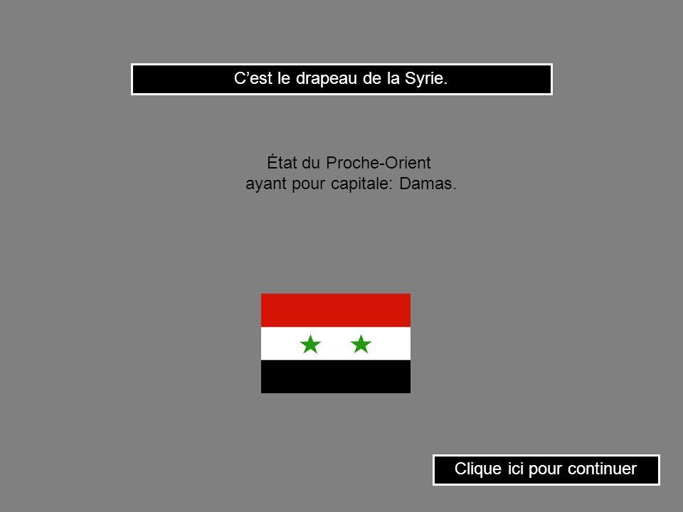C'est le drapeau de la Syrie.
