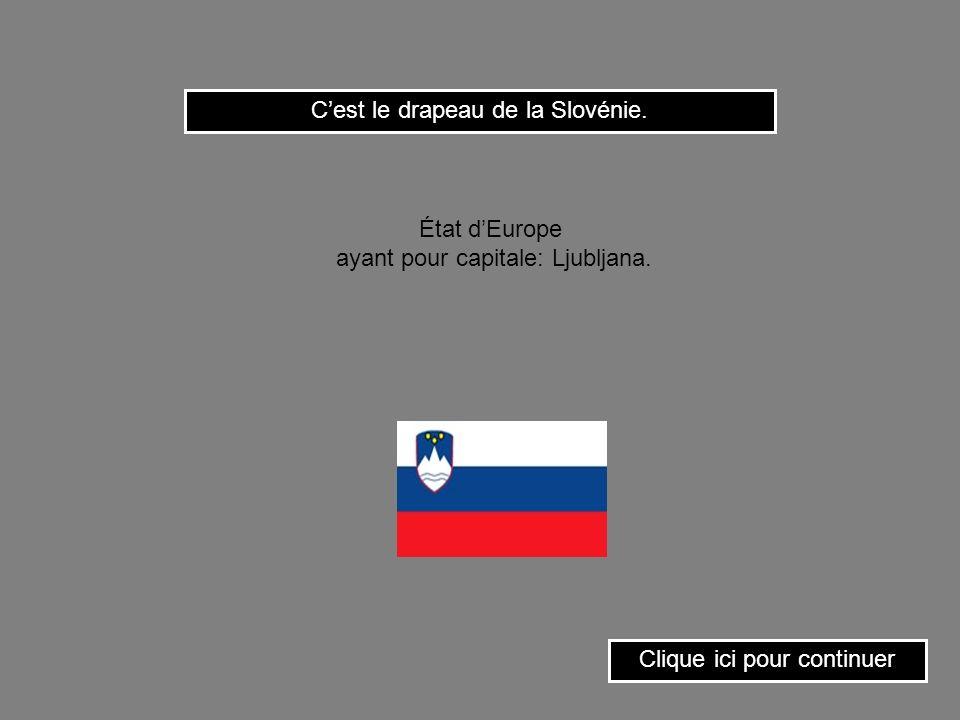 C'est le drapeau de la Slovénie.