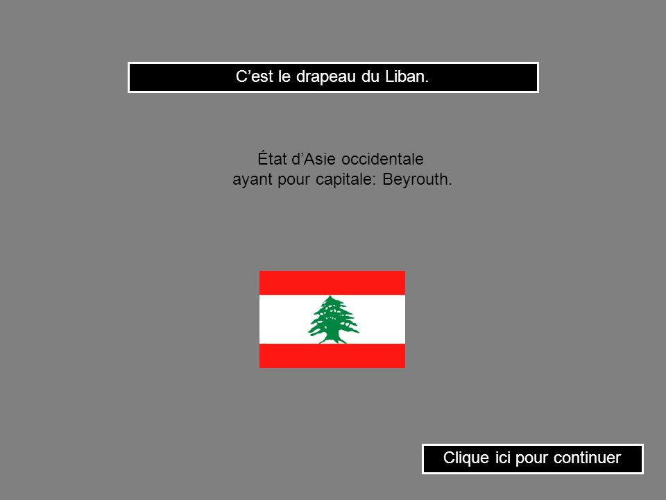 C'est le drapeau du Liban.