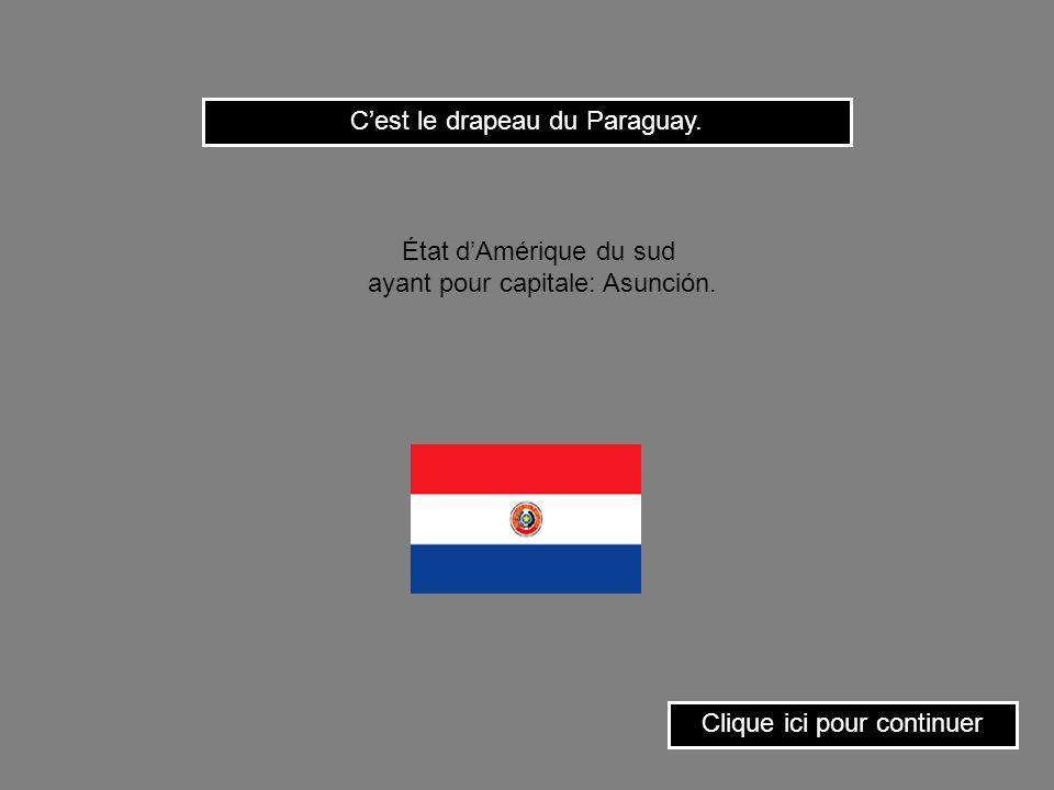 C'est le drapeau du Paraguay.