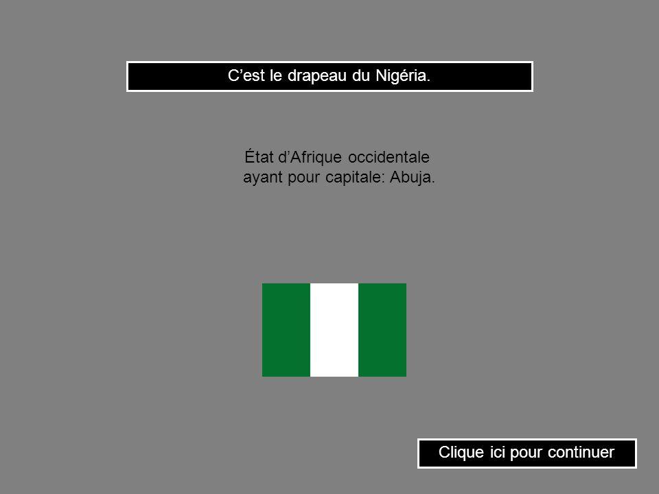 C'est le drapeau du Nigéria.