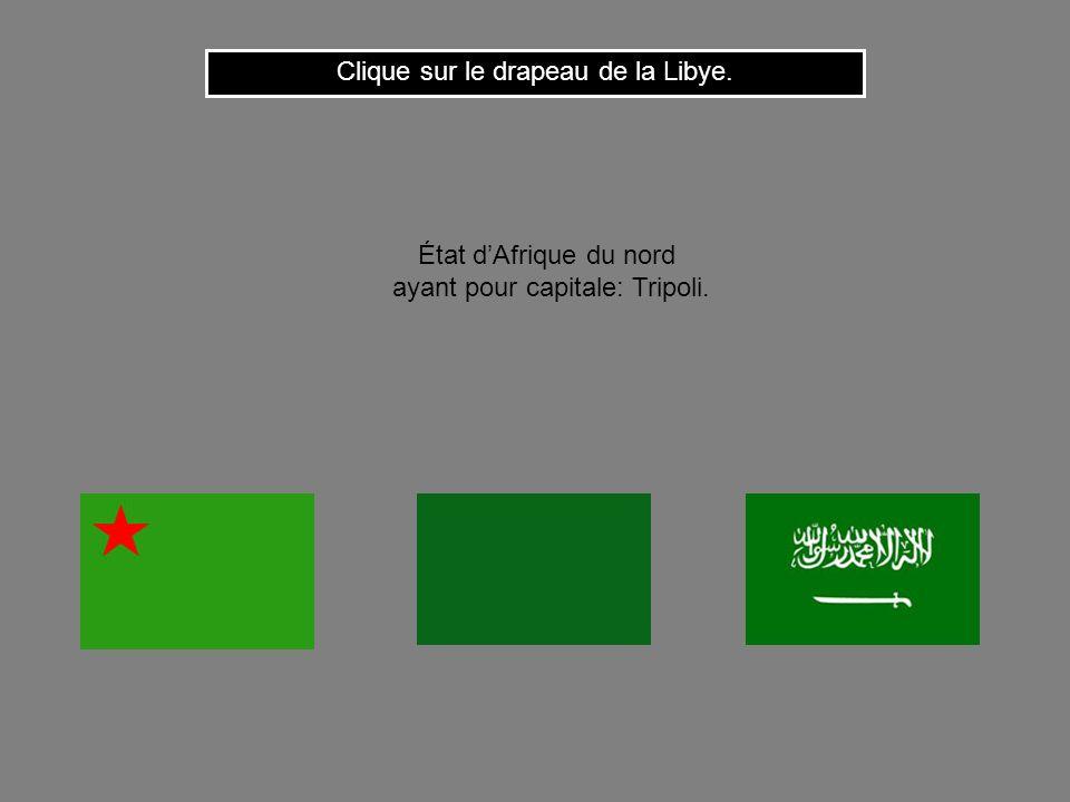 Clique sur le drapeau de la Libye.