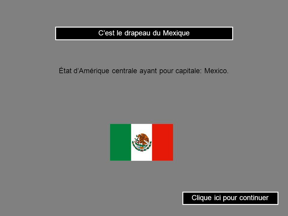 C'est le drapeau du Mexique