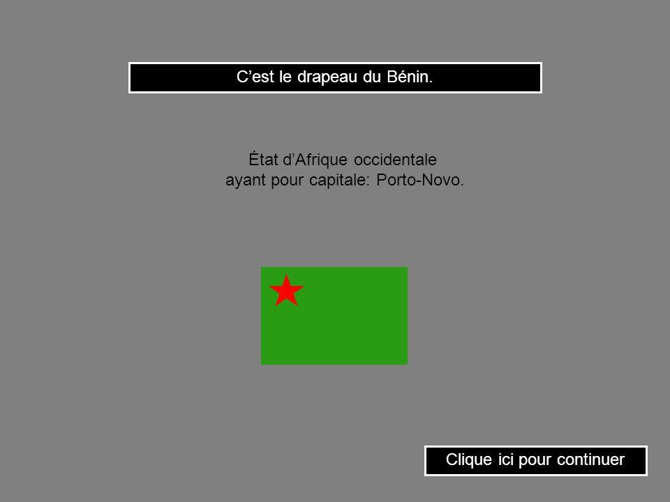 C'est le drapeau du Bénin.