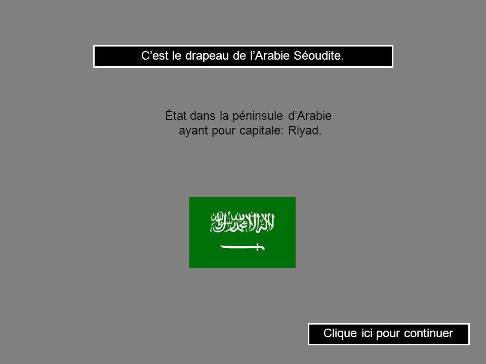 C'est le drapeau de l'Arabie Séoudite.